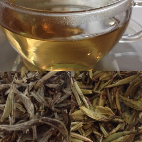 Tea test Fujian White Silver Needle Pekoe Tea de Fortnum and Mason - ©Chloé Chateau