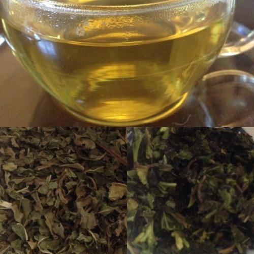 Tea test : l'infusion menthe-basilic de Gourmet by Nature - ©Chloé Chateau