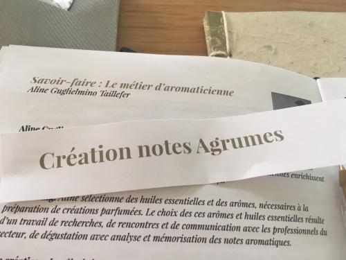 Création thé parfumé - brief création notes Agrumes - ©Chloé Chateau