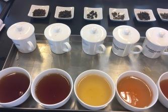 Dégustation de thés d'Inde et de Nouvelle-Zélande Dammann Frères - ©Chloé Chateau