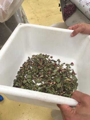 Les déchets récupérés lors du tri des pétales de rose de Bulgarie Dammann - ©Chloé Chateau