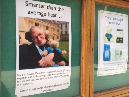 Gonville and Caius College Bear with Stephen Hawking