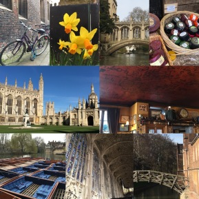 Pictures of Cambridge: bikes, daffodils, bridge of sighs, King's College Chapel, RAF bar at the Eagle, punts, Mathematical Bridge...